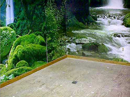 The first step to building an indoor pond is to choose wallpaper murals fo rthe backdrop. These murals give the feeling of being near a rushing, rocky river in a lush setting