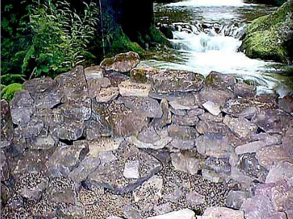 Real, moss-covered rocks are placed around the form to help create the natural look of the pond.