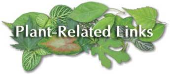 plantlinks